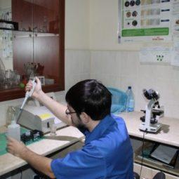Лабораторні дослідження у ветеринарній клініці